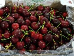 Sweet cherries from Greece