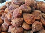 Dried Fruits and Nuts for Export - photo 8