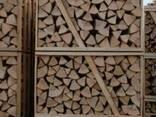 Firewood - фото 1