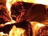 Kurināmās briketes Nestro no saulespuķu čaumalām. - фото 3