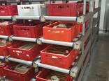 Оборудование для мясопереработки, гигиена и санитария - photo 5