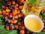 Пальмовое масло - photo 4