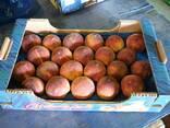 Персики - photo 2