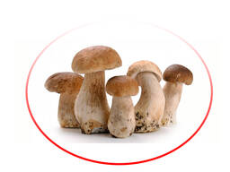 Porcini mushrooms whole frozen