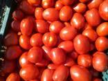 Продаем овощи в ассортименте. - фото 4